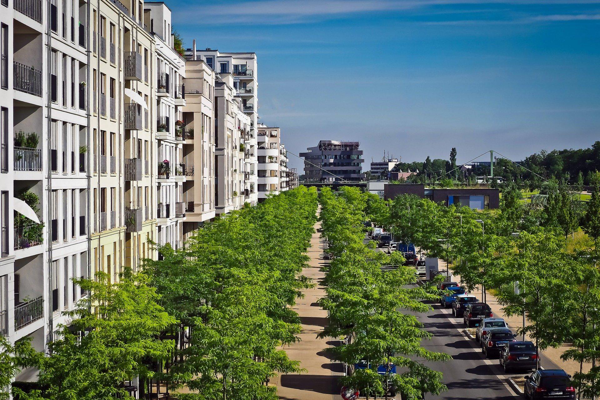 Ville et végétalisation